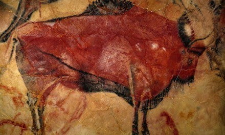 Altamira Cave Re-Opens for Visitors